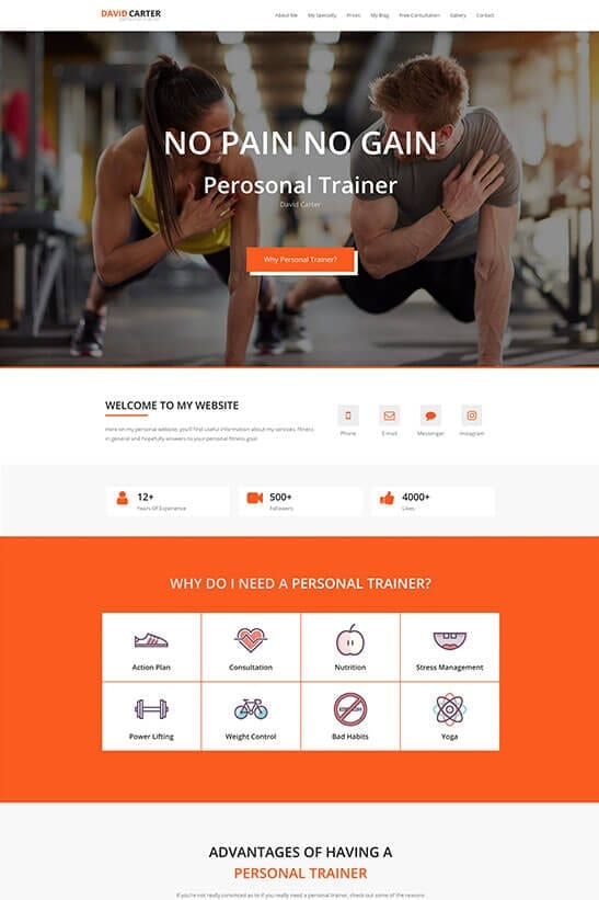 Fitness trainer website