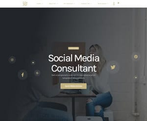 Social Media Consultant business website